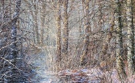 "Exhibition of Dmitry Kustanovich ""TO MY FATHER"", Minsk, Belarus"