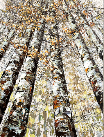 Gallery Autumn birches