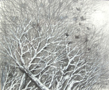 Gallery Etude Birds on Winter Trees