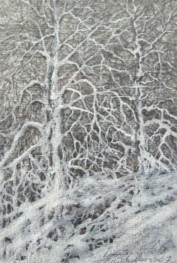 Gallery Etude Two trees in winter wood